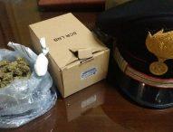 Cercano i ladri, trovano marijuana e cocaina: un arresto