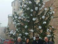 Natale a San Costanzo: solidarietà e tanti eventi