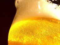 Birra artigianale entra nel paniere Istat, la beve quasi un marchigiano su due. Boom microbirrifici