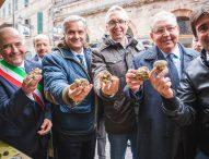 Sant'Angelo in Vado profuma già di tartufo. Il 7 ottobre al via la 54esima Mostra Nazionale