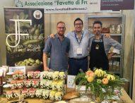 A Terra Madre Salone del Gusto in vetrina la fava di Fratte Rosa Presidio Slow Food