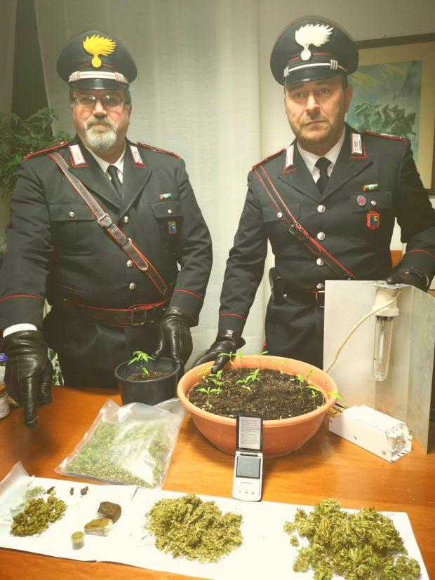 San Lorenzo in Campo, coltivava marijuana nel garage: arrestato