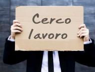 Offerte di lavoro dei Centri per l'Impiego di Pesaro, Fano e Urbino