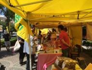 Coldiretti Pesaro Urbino, misure di sicurezza per mercati e uffici. Apprensione in campagna: partita di Bianchello bloccata e disdette negli agriturismi