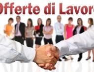 Opportunità di lavoro a Pesaro, Fano e Urbino