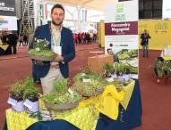 Alla giornata dell'innovazione Expo arrivano dalle Marche le torte di prato