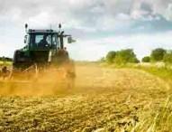Pubblicato bando per giovani agricoltori 23,5 milioni per favorire ricambio generazionale