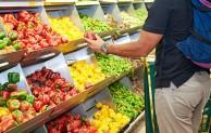 """Coldiretti Marche: """"Primi segnali di ripresa per l'export agroalimentare"""""""