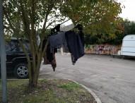 """Conter (FdI): """"Parcheggio di viale Kennedy adibito alla sosta di nomadi senza il minimo controllo"""""""