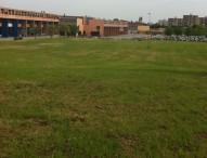 Sfalcio dell'erba lungo le strade provinciali, avviati gli interventi