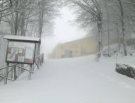 Arriva la neve nelle Marche