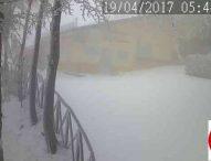 Ondata di maltempo, neve sulle Marche