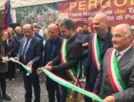 Il Fly Fano Team, Pippo Franco, 9 regioni in vetrina: un successo la prima domenica della Fiera del Tartufo di Pergola