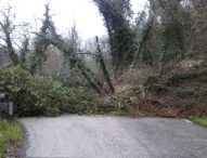 Frane, smottamenti e alluvioni lungo le strade, Provincia si prepara a chiedere stato di emergenza