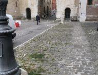 """Mirisola: """"'Fano fiorisce' ma la città è piena di erbacce"""""""