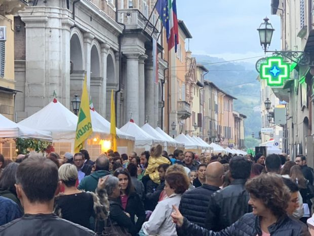 Per la seconda domenica della Fiera Nazionale del Tartufo di Pergola tour operator e turisti da tutto il mondo