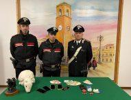 Cocaina nel peluche: arrestate due ragazze