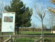 'Dalla pista dell'aeroporto Mondolfo Airfiled 1945 alla nuova pista ciclabile' che collegherà Piano Marina a Marotta