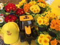 Coronavirus, via libera vendita piante e fiori