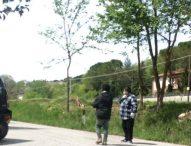 Vagava da giorni tra Serra, Frontone e Pergola. Giovane trovato e rifocillato