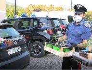 Operazione 'Bunker', duro colpo allo spaccio nella provincia di Pesaro Urbino: 7 arresti, 15 denunce, sequestrati 200 grammi di cocaina