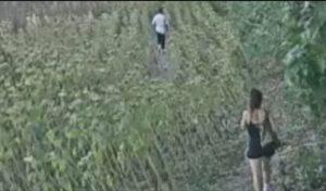 3 etti di cocaina interrata tra i girasoli: arrestata dai carabinieri coppia di spacciatori
