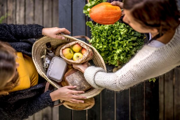 I piccoli produttori agroalimentari in rete con i cittadini: arrivano gli Alveari