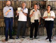 Pergola: week-end tra vino, libri, arte e attività outdoor in uno dei Borghi più belli d'Italia