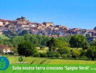 Comune Mondolfo ottiene le 'spighe verdi' per il quinto anno consecutivo