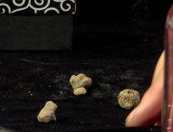 A Pergola l'asta per 'il tartufo più piccolo del mondo'.Un successo la 25esima edizione della Fiera